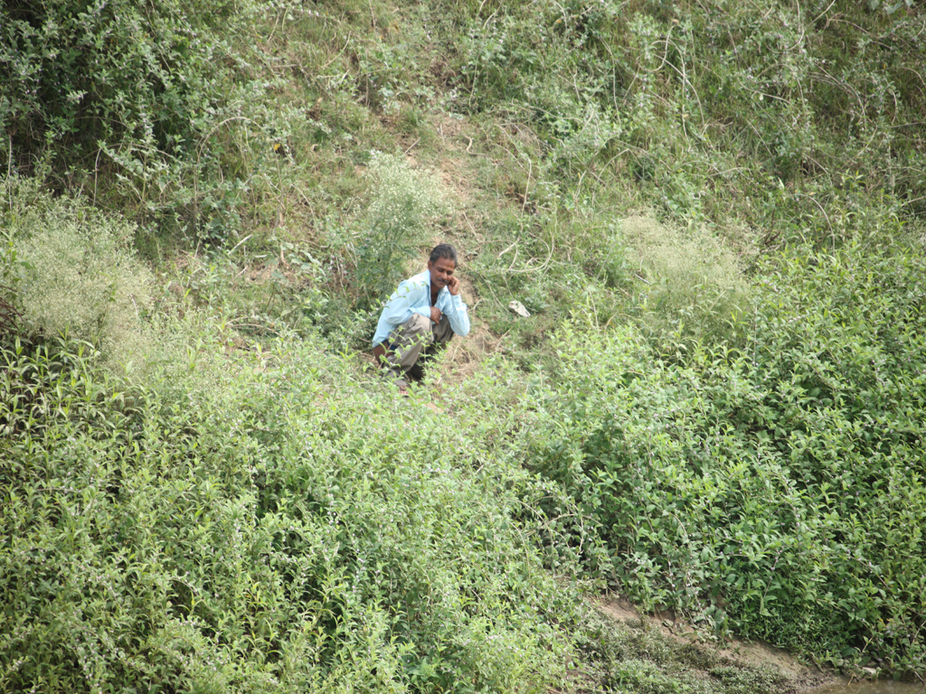 Envis centre ministry of environment amp forest govt of india